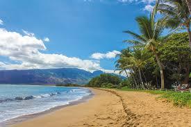 Música relajante étnica 1 imagen de playa