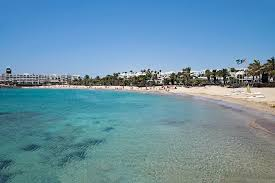 Música relajante chillout 8 imagen de playa paradisiaca